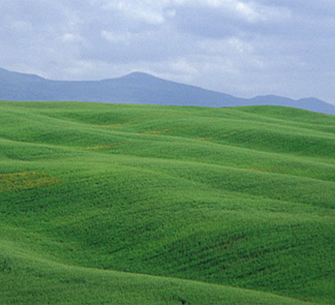 Breathe in the fresh air surrounded by the Orcia Valley and Mount Amiata awe-inspiring landscape